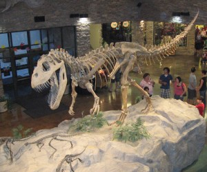 Things to do in the UK with kids dinosaur museums