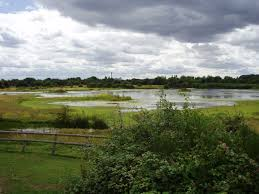 Free children's activities in the UK nature reserve